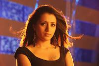 HeyAndhra Trisha Latest Hot Photos from Dammu HeyAndhra.com
