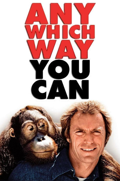 Any Which Way You Can [1980] [DVD9] [NTSC] [Subtitulado]
