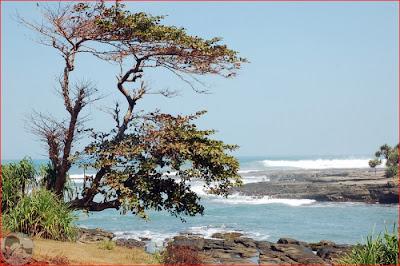 Pantai Rancabuaya Garut Panorama Wisata