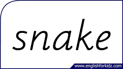 snake flashcard, single word