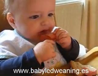 BLW alimentacion complementaria para bebes