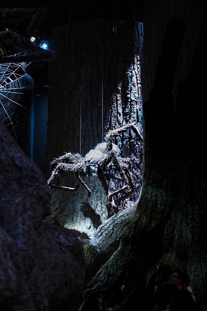 Giant spiders in Forbidden Forest at Harry Potter Warner Brothers Studio Tour