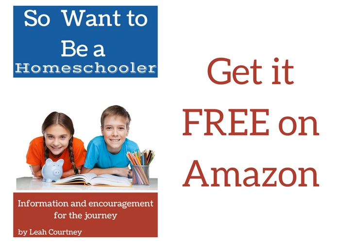 Buy So You Want to Be a Homeschooler