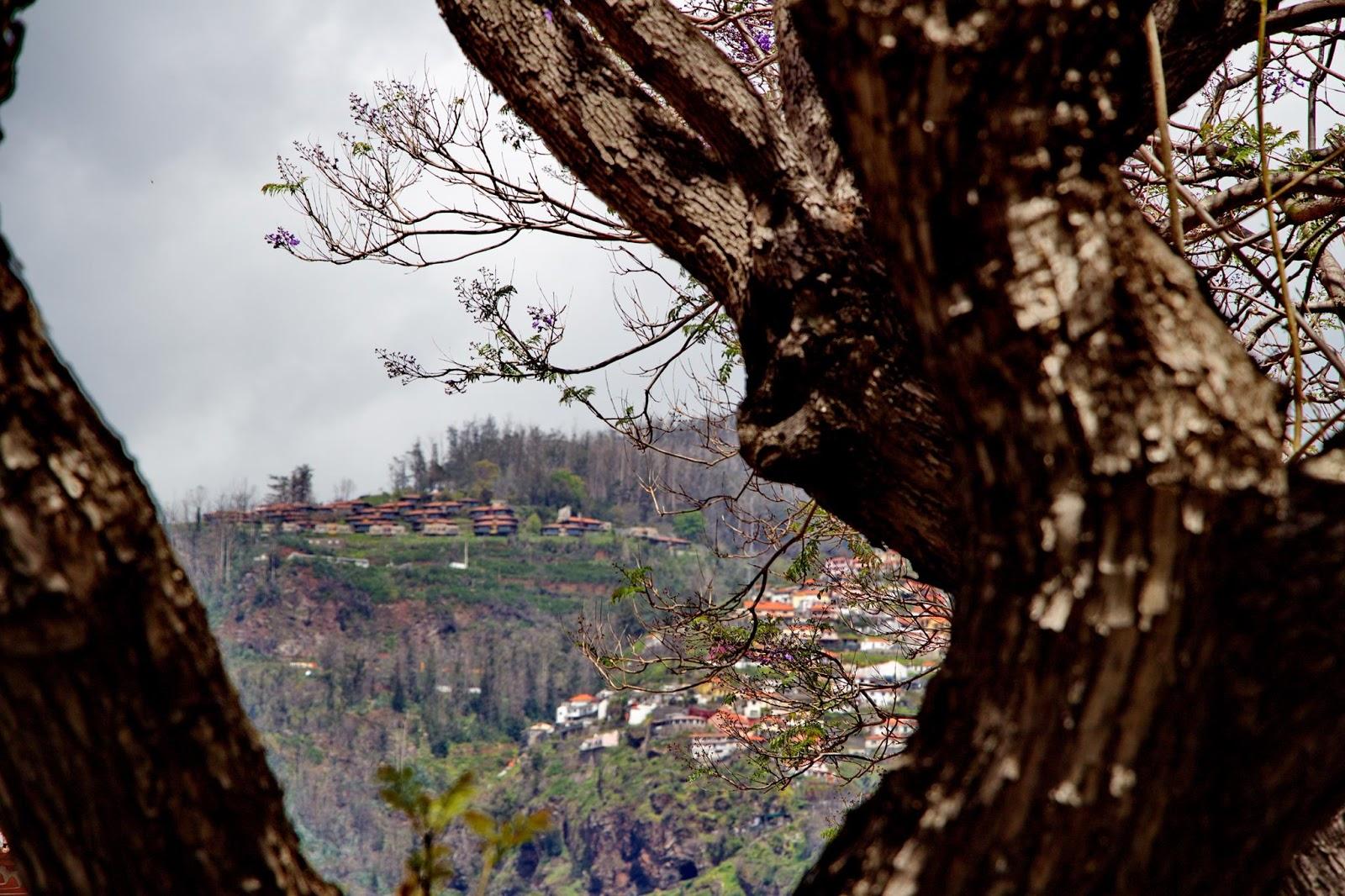Choupana Hills definha a cada dia