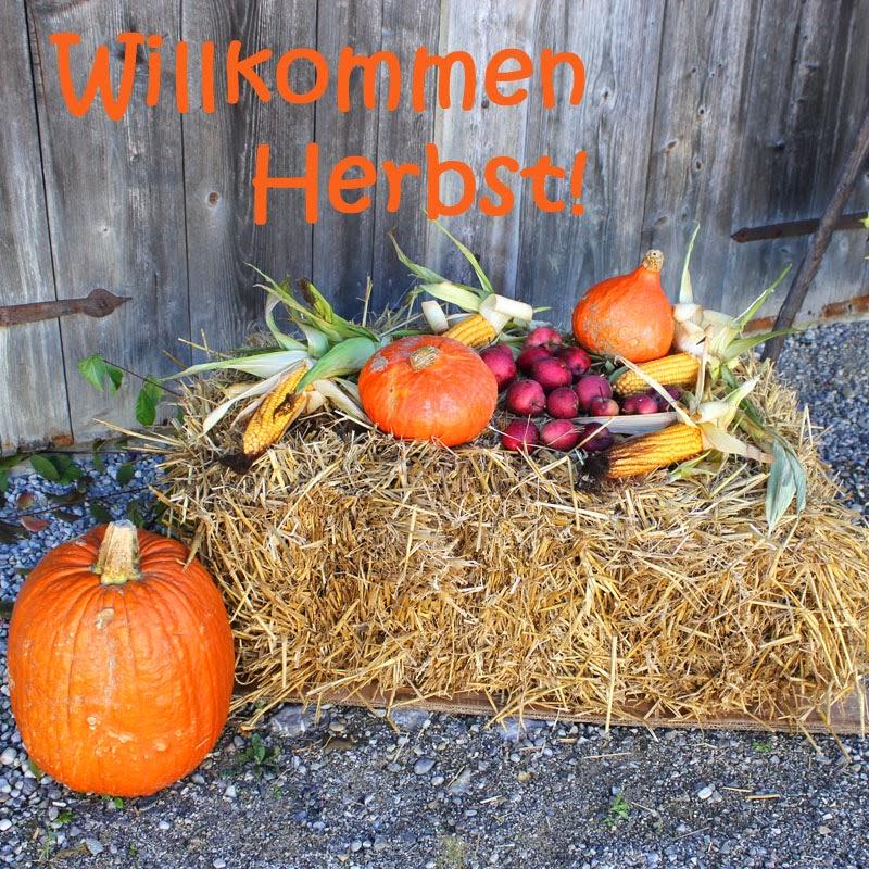 Nachdem wir es nicht ändern können - Willkommen Herbst ...