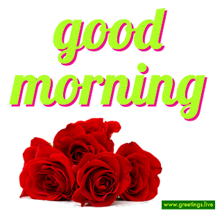 Good morning Whats app sticker with Red roses