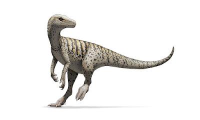 Herrerasaurus | facts | size