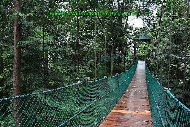 Suspension bridge, FKL Forest Eco Park, KL Tower, Kuala Lumpur, Malaysia