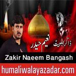 http://www.humaliwalayazadar.com/2016/10/zakir-naeem-bangash-nohay-2017.html