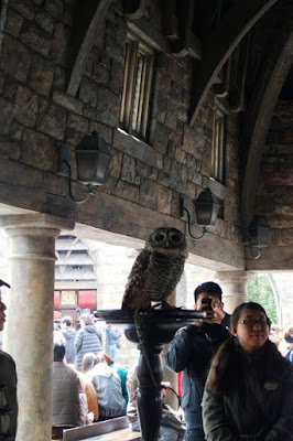 Owl Live Action at Wizarding World of Harry Potter at USJ