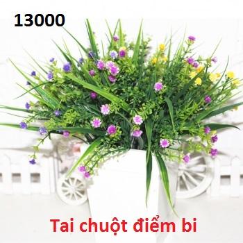 Phu kien hoa pha le o Trung Van