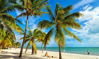Key West Vacation Rentals, Florida Keys Hotel Specials