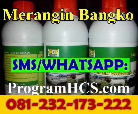 Jual SOC HCS Merangin Bangko