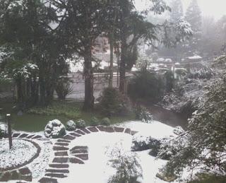 Vista com neve - Apartamento Temporada Gramado