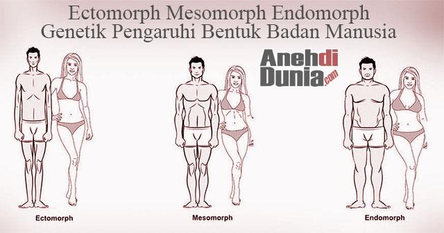 3 Cara Menambah Berat Badan Bagi Ectomorph