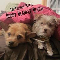 Buddy Blanket pet blanket review