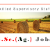 B.Sc.Agriculture Job Vacancy ICAR CPCRI