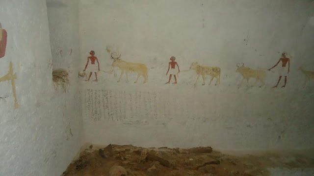 Burial chambers of two Middle Kingdom officials discovered in Egypt's Minya