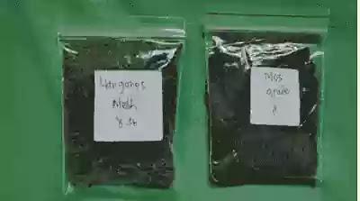 Sampel manganese greensand di Ady Water