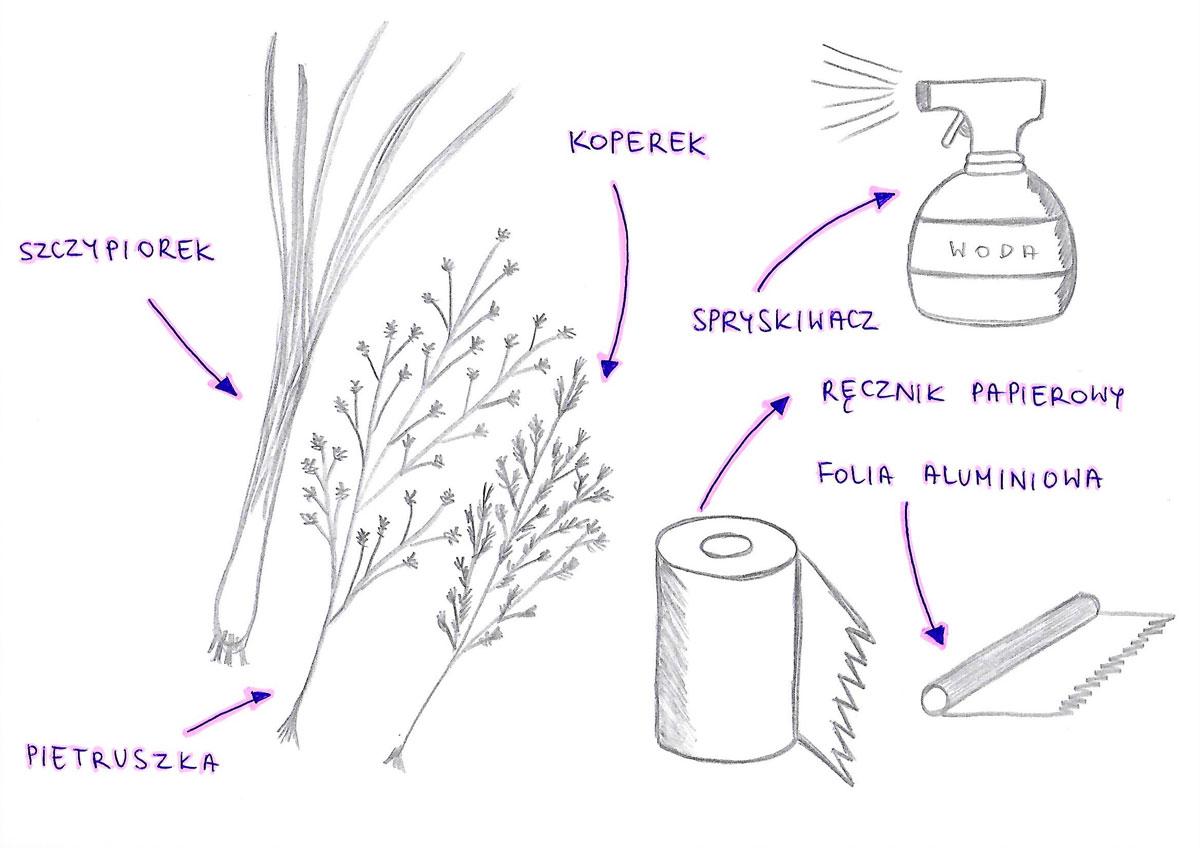 Jak przedłużyć świeżość ziół (szczypiorek, pietruszka, koperek)?
