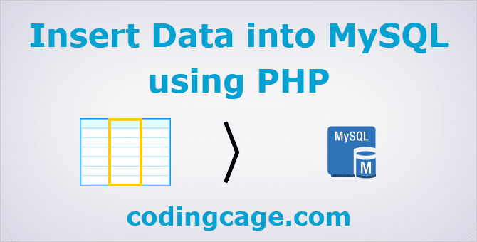 PHP Data Insert Into MySQL Database