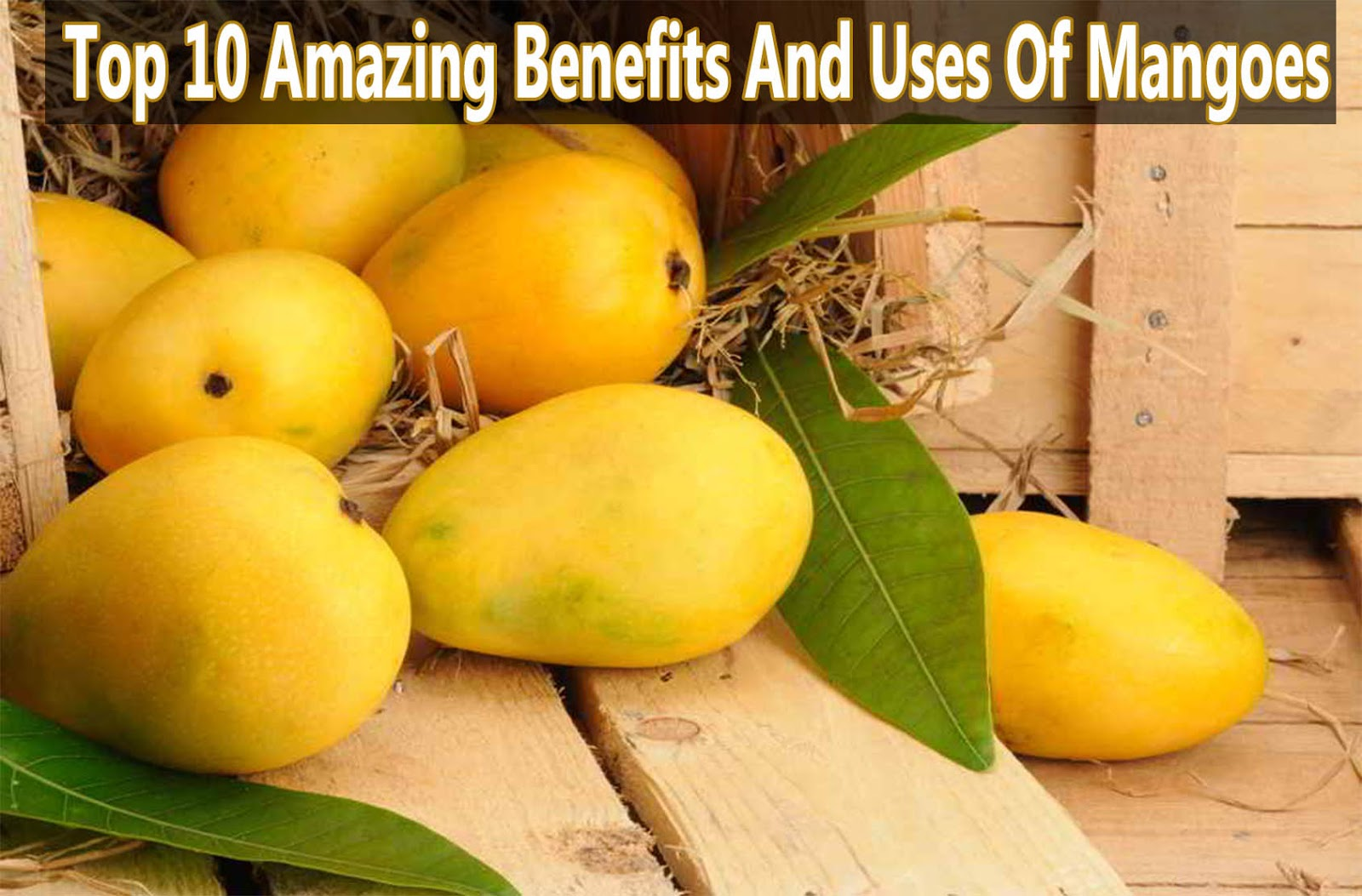 10 Amazing Benefits And Uses Of Mango Leaves (Aam Ke Patte)