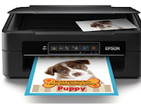 Epson XP-241 Drivers and software Download