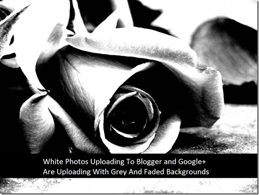 White Photos Uploading To Blogger and Google  Are Uploading With Grey And Faded Backgrounds