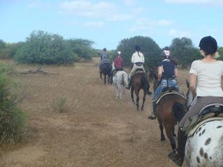 botswana, laukka, ratsastusmatka, riitta reissaa