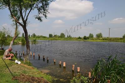 Pescar Delta Dunarii Romania Pui de Morosan
