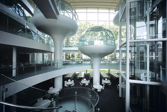建築家が設計した本を読みたくなる、ステキな図書館6選 成蹊大学図書館 坂茂