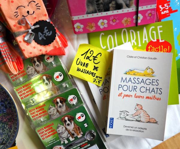 massages pour chats et pour leurs maîtres