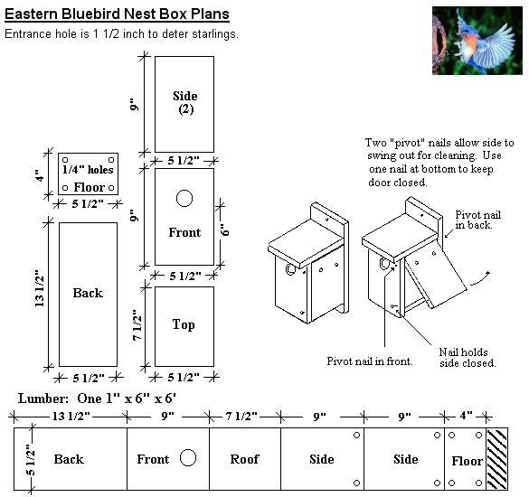 http://2.bp.blogspot.com/-YcKkZmRIjVU/UU-Sx95YtYI/AAAAAAAABnE/88c4ErDNJwM/s1600/eastern+bluebird+box.jpg