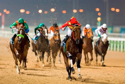 free racing tips, betting tips, best betting tips,