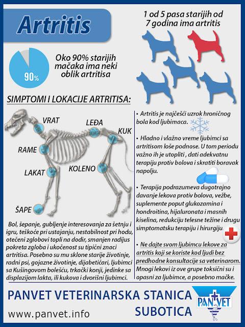 Artritis kod životinja