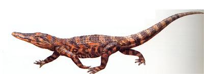 cocodrilos del cuaternario Pristichampsus