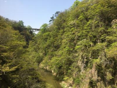 新緑の鳴子峡