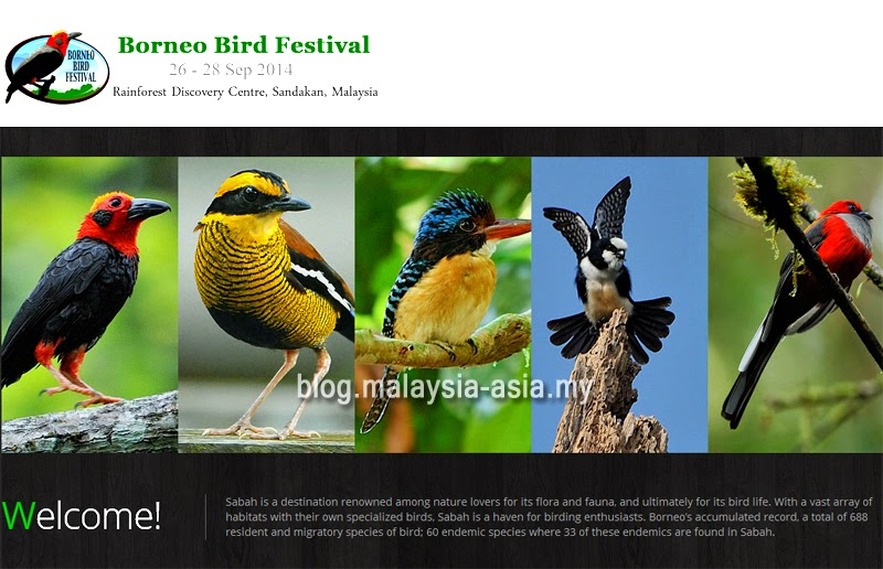 Borneo Bird Festival 2014
