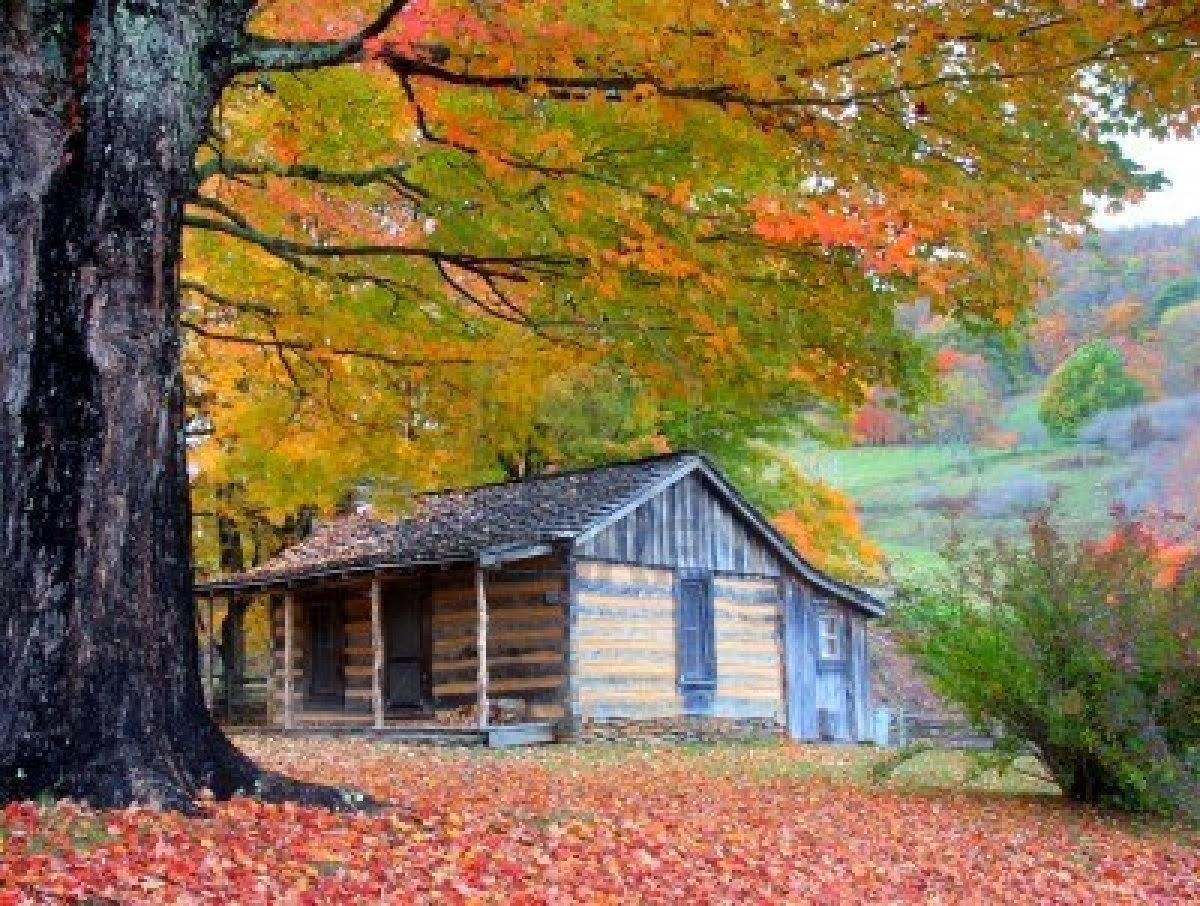 Fall Cabin The Woods Wallpaper Garden Amazing Admirable Seasonal Wallpapers For Desktop