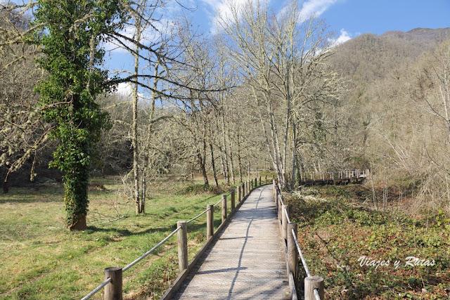 Pasarela de madera de Muniellos, Asturias