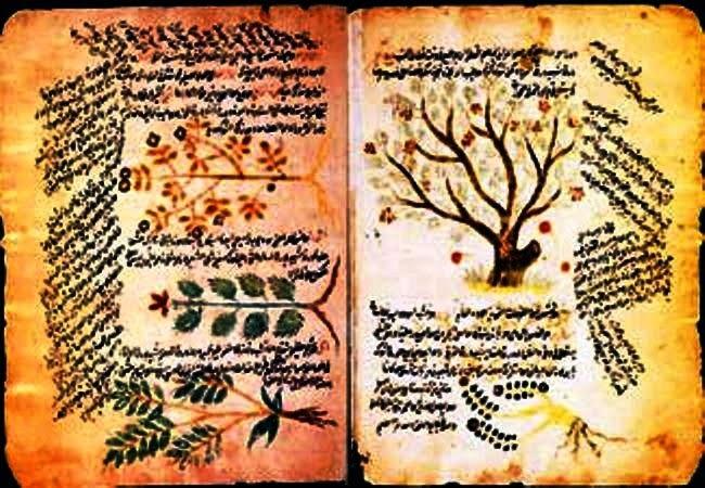 Mengenal Ibnu Juljul, Sang Dokter dari Cordoba