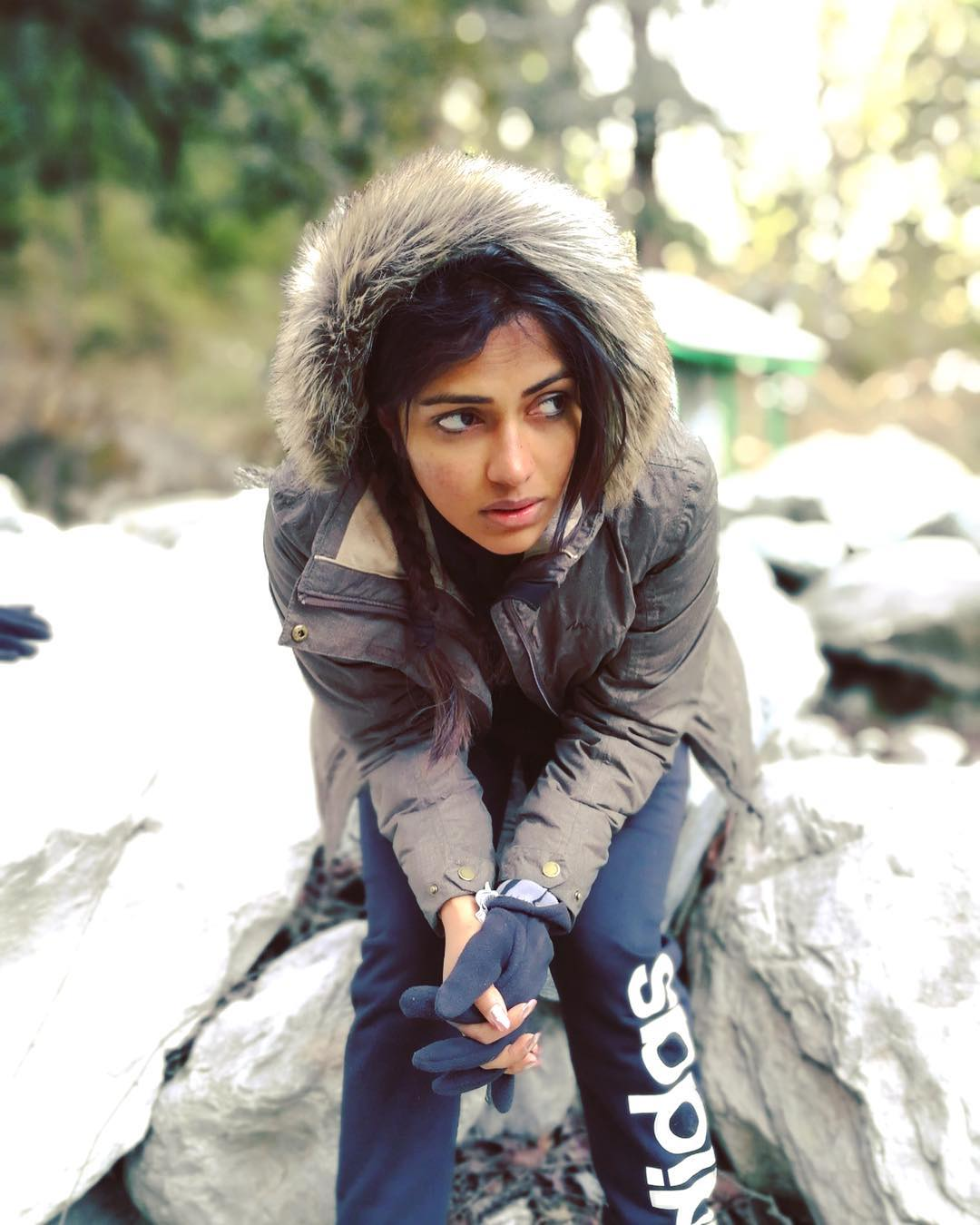 Amala Paul Photos | Amala Paul Images - HD Actress Photo