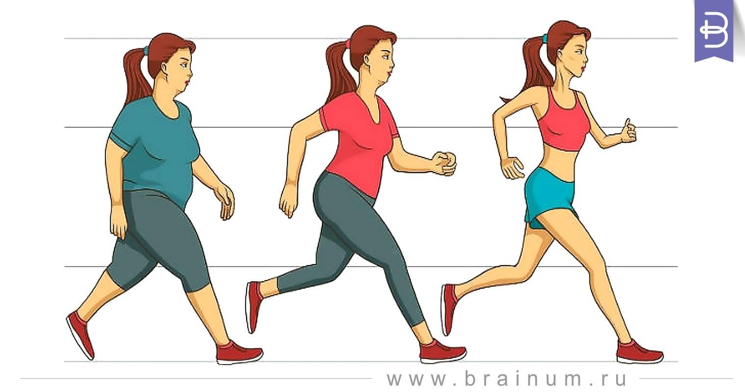 Сколько проходить шагов в день для похудения? Youtube.