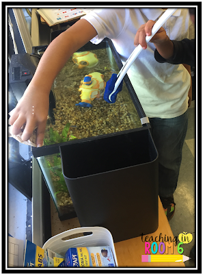 A classroom fish tank is a great way to teach responsibility as well as get some science standards in