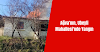 Ağva'nın, Ubeyli Mahallesi'nde Yangın
