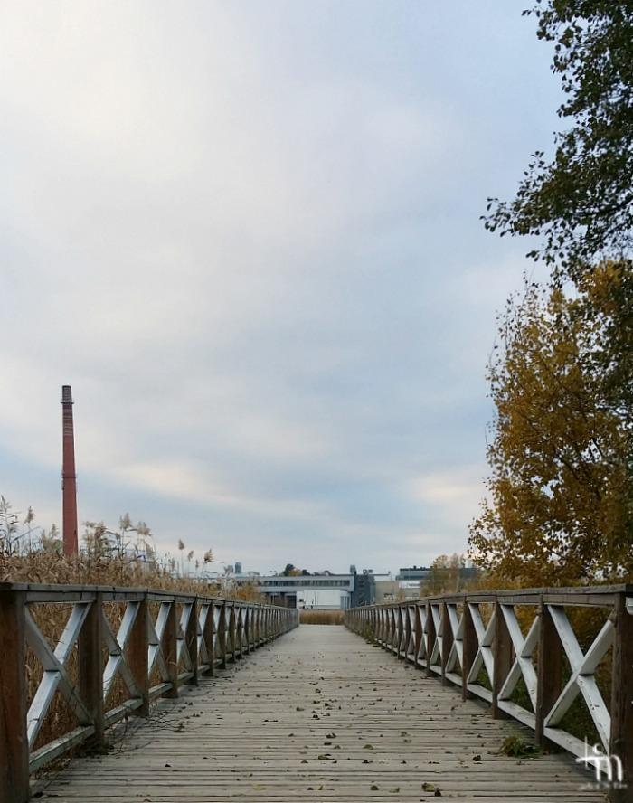 rantalaituri Ruissalossa