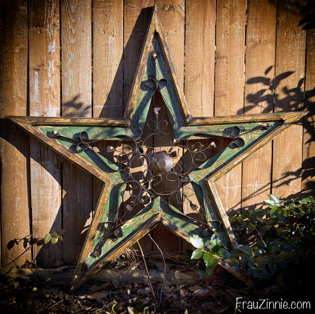 this is the garden star i purchased from the connecticut flower and garden show