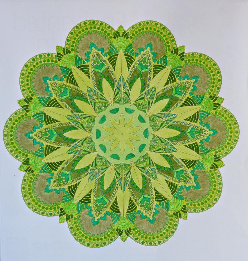 coloring fun fifty shades of green mandala 50 Shades Book Review  50 Shades Of Fun Coloring Book