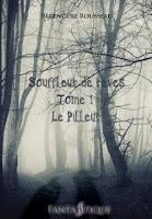 http://lesreinesdelanuit.blogspot.be/2016/04/souffleur-de-reves-t1-le-pilleur-de.html