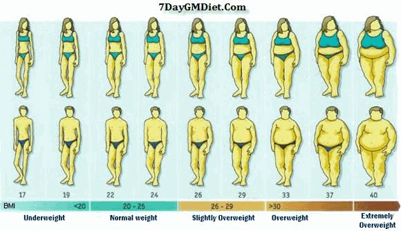 gm diet ideal weight chart for men women
